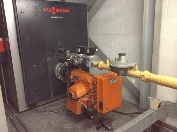 viesmann boiler 2 | MC Services